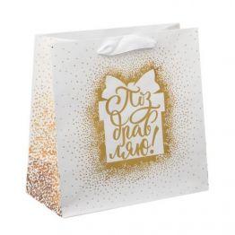 Пакет ламинированный квадратный Поздравляю, 22 × 22 × 11 см